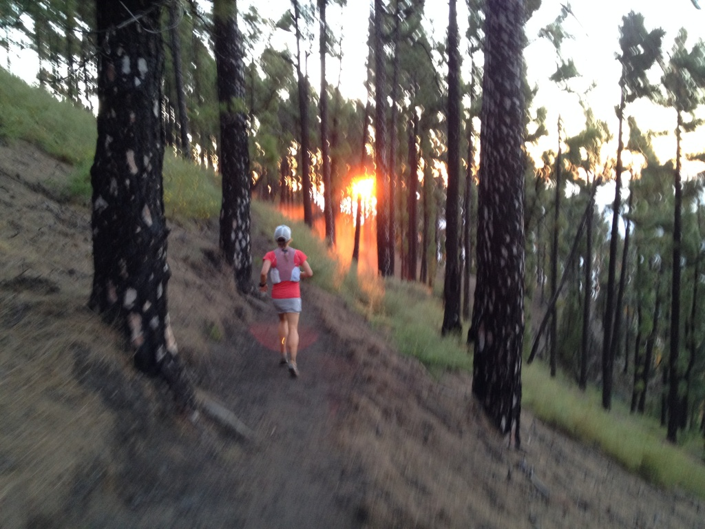 Running through the pines on the way toward Volcan Martin on Ruta del Baston from Fuencaliente. Photo: Jamil Coury